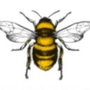 Gruppenlogo von 5 G – Killer der Bienen Bäume und Menschen